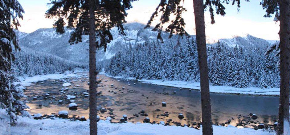 Winter on the Chilkoot River
